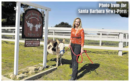 Miniature Donkeys - Santa Barbara News-Press